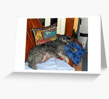 Satchmo having forty winks. Greeting Card