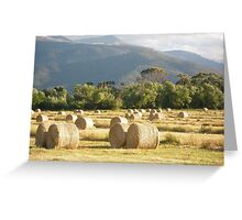 Mt Beauty Bale's Greeting Card