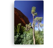 trees and red rock Canvas Print