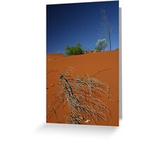 Red sand dune, NT, Australia Greeting Card