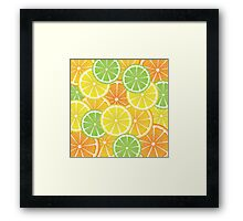 Various Citrus Slices 3 Framed Print