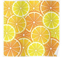 Various Citrus Slices 4 Poster