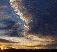 Sun up by Liz Worth