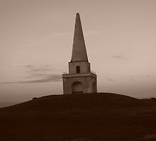 Sepia Monument on Killiney Hill by Matt Nolan