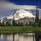Mt Rainier in Washington by Jonicool