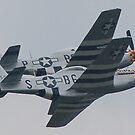 Double Trouble P-51 Mustangs by Steven Squizzero
