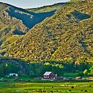 Madison County (Montana) Farm by Bryan D. Spellman