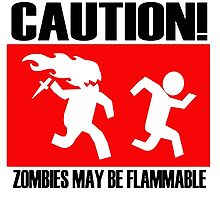Caution! Zombies may be flammable by funnyshirts
