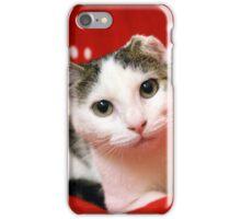 One Eared Rescue Cat iPhone Case/Skin