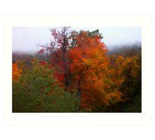Virginia Trees Art Print