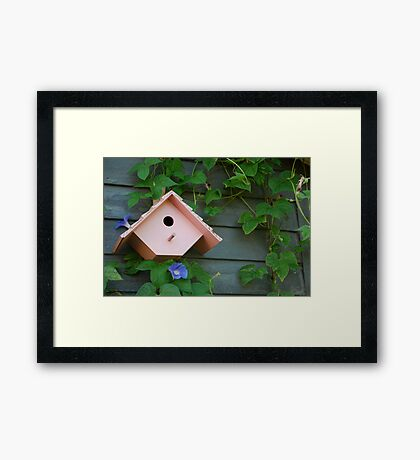 Birdhouse with Morning Glories Framed Print
