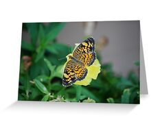 Butterfly on Snapdragon Greeting Card