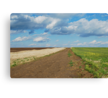 Of Wheat and Sky in Kansas Canvas Print