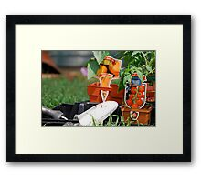 Vegetable Planting Time Framed Print