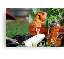 Vegetable Planting Time Canvas Print