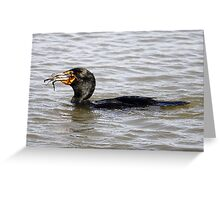 Cormorant catching and eating a Crab  Greeting Card