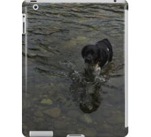 Crystal Clear Water Play - the Splashing Puppy iPad Case/Skin