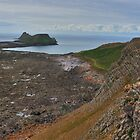 Looking West Towards Worms Head from Thurba Head by Spenser Davies