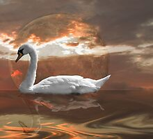 A Swan in the Evening moves over the Lake by Christopher Cosgrove