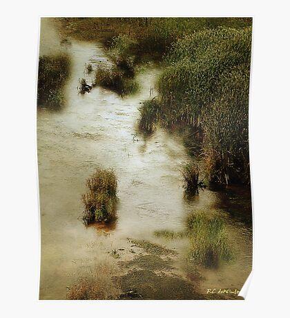 Flood Tide in the Salt Marsh Poster