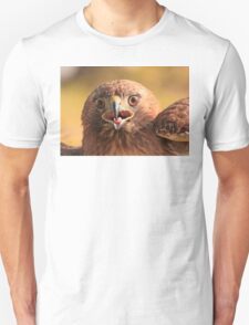 Red Tail Hawk - Family:  Accipitriformes T-Shirt
