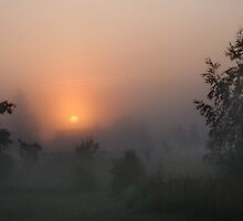 Sunrise in mist by Antanas