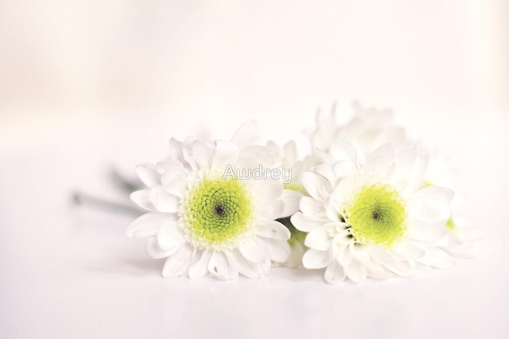 Whit Flowers by Awdrey