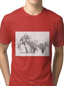 Oaktrees in the Snow Tri-blend T-Shirt