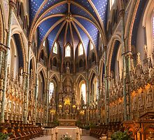 Notre Dame Cathedral - Ottawa, Canada by Josef Pittner