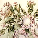 Proteas by Marie Theron