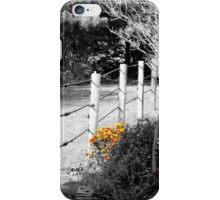 Splash of Color Flower Garden iPhone Case/Skin