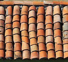 Vintage Roof in Southern France by Atanas Bozhikov NASKO