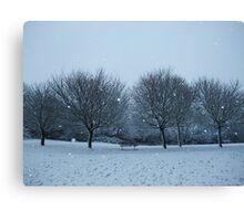 Snowy Scene, Honiton, January 2010 Canvas Print