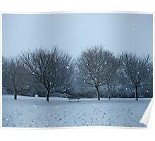 Snowy Scene, Honiton, January 2010 Poster