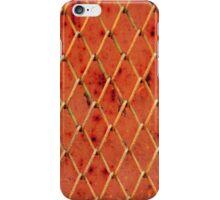 Metallic Vintage Net iPhone Case/Skin