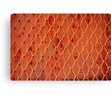 Metallic Vintage Net Canvas Print