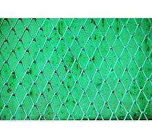 Turquoise Vintage Iron Net Photographic Print