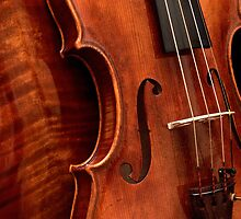 'Il Cannone' by Guarneri, Cremona 1742 by Nick Bland