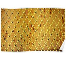 Background of vintage iron net Poster