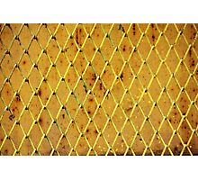 Background of vintage iron net Photographic Print