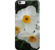 Daffodils Selectively iPhone Case/Skin