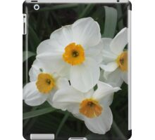 Daffodils Selectively iPad Case/Skin