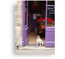 Minding The Shop - Two French Dogs In Boutique Canvas Print