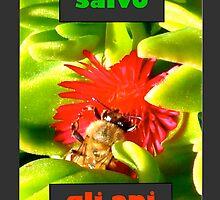Save The Bees (Italian) by okmondo