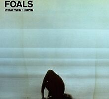 Foals what went down by Rad-Socks-Pugie