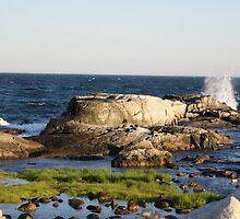 SunSet Newport Coast by DIANE KLEVECKA