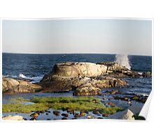 SunSet Newport Coast Poster
