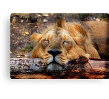 Logged Out!!! Canvas Print