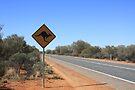 Kangaroos Crossing by Tam  Locke
