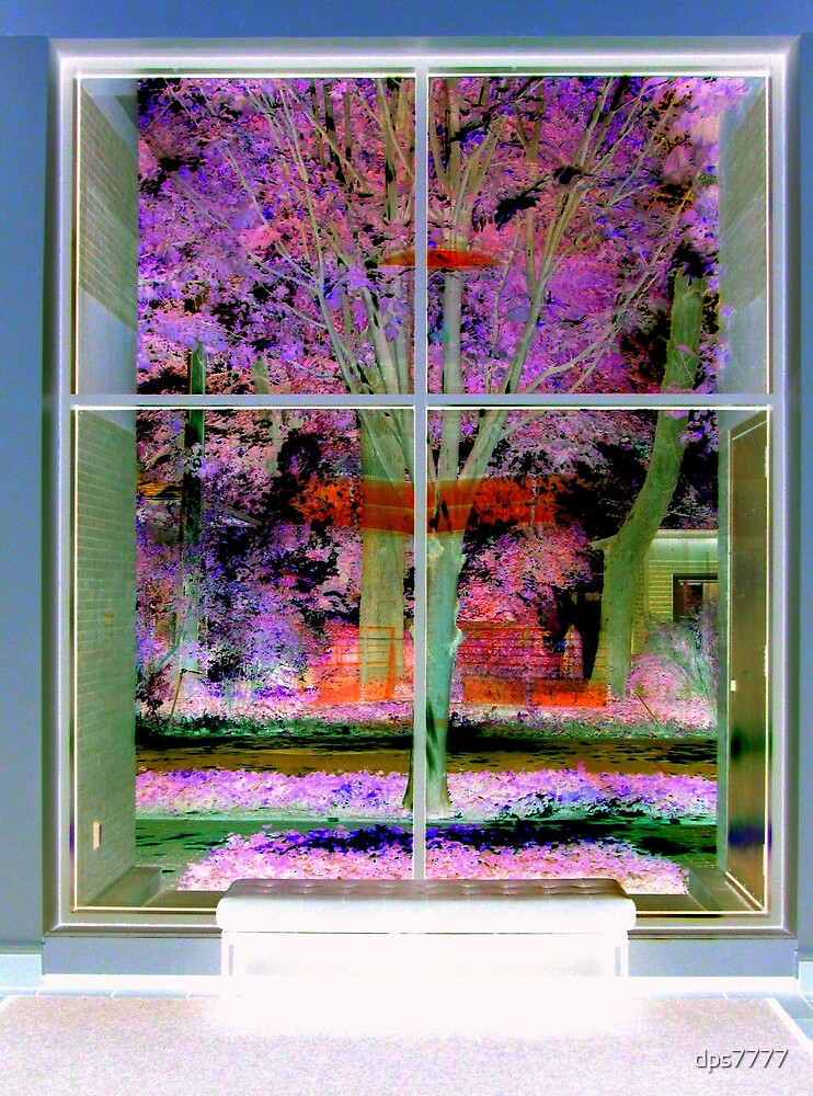 Window View by David Schroeder